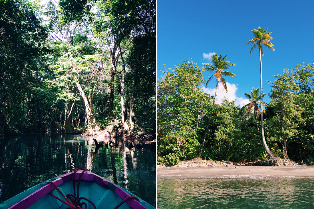 Indian River and beach in Dominica