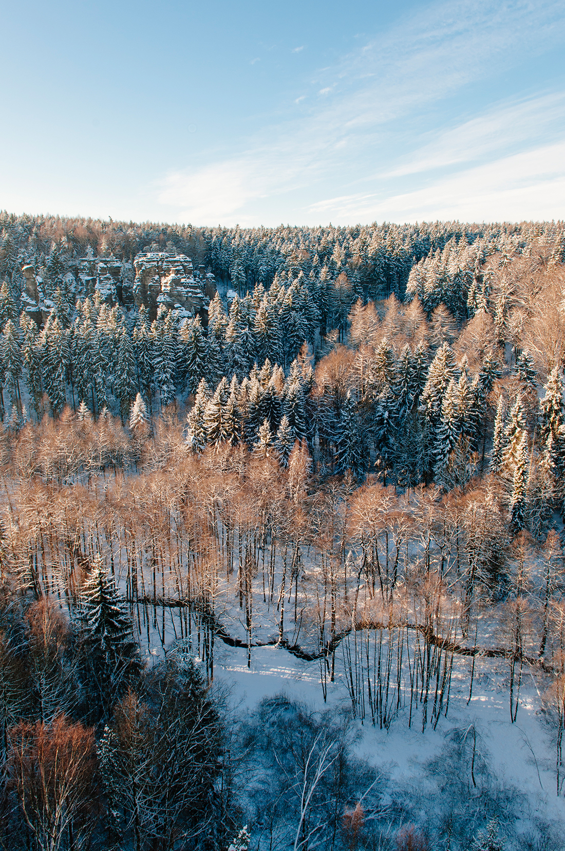forest, winter hike in Rosenthal-Bielatal