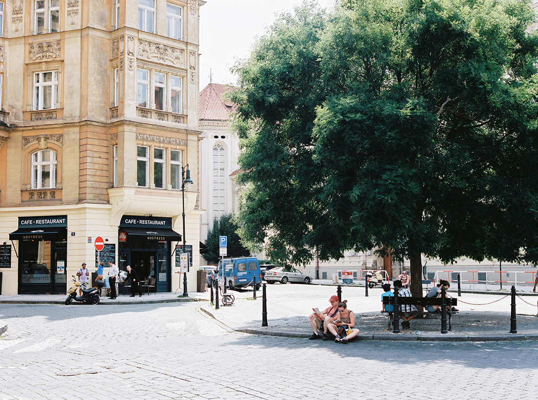 Couple sitting underneath a tree in Prague